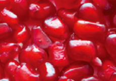 FERMENT'ACTIVE POMEGRANATE